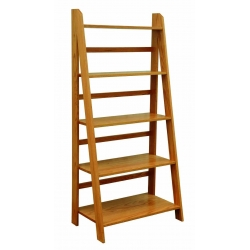 Self-Standing Ladder Bookshelf
