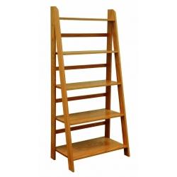 Self Standing Ladder Bookshelf